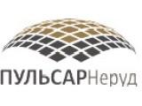 Логотип ПУЛЬСАР Неруд, ООО